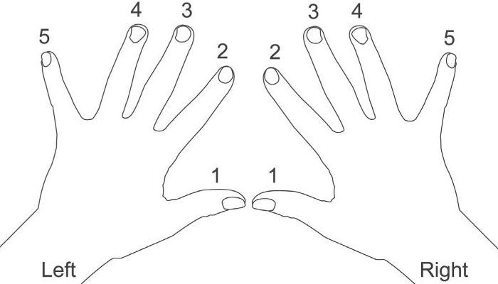 what are the finger numbers for piano?